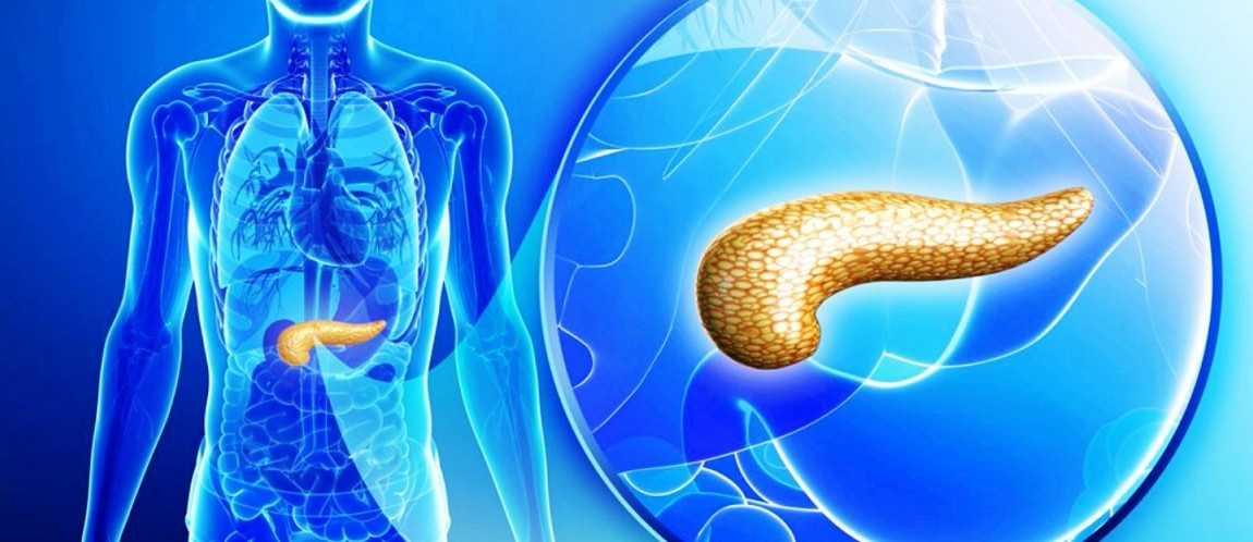 Народные рецепты лечения рака поджелудочной железы. Лечение рака поджелудочной железы народными средствами. Что нужно знать, прибегая к народному лечению