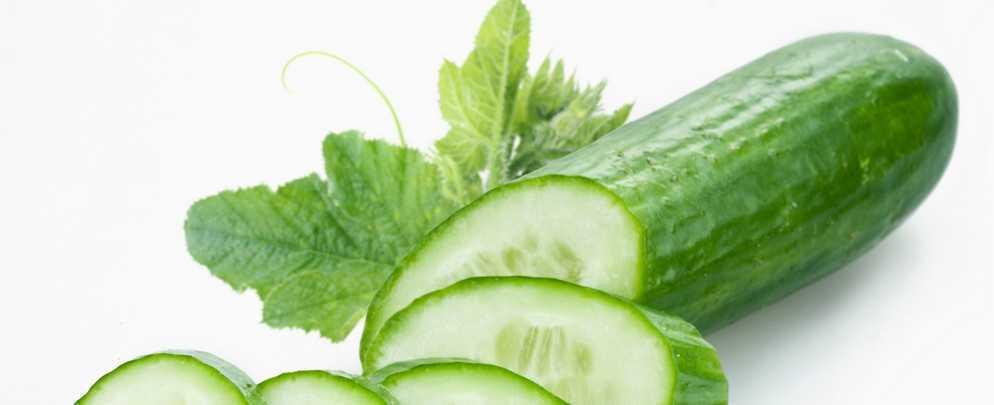 Огурцы обыкновенные - лечебные свойства и противопоказания ✿ Народная медицина, травы, рецепты