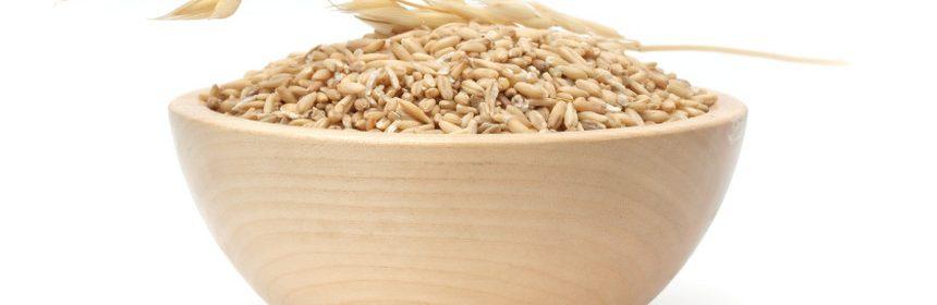 Овес для похудения: народные рецепты и способы приготовления 1
