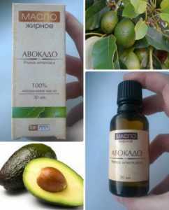 выбор масла авокадо