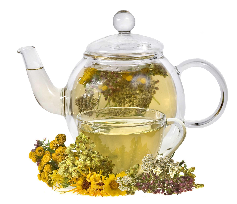 чай из бессмертника