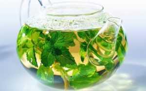 чай из мелиссы