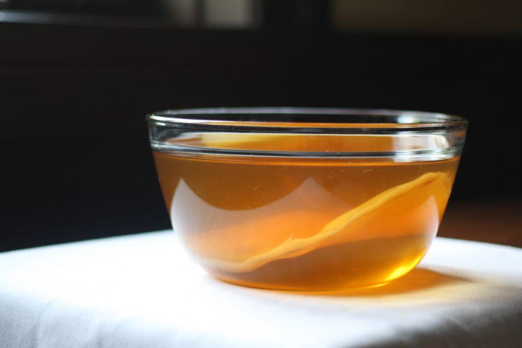 Как правильно выращивать чайный гриб домашних условиях