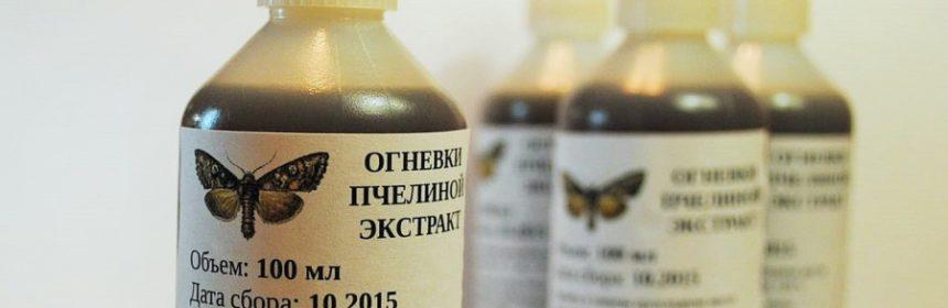 Помогает ли огневка пчелиная от паразитов: отзывы - metodyi-lecheniya