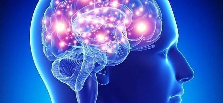 побочное влияние корицы на мозг
